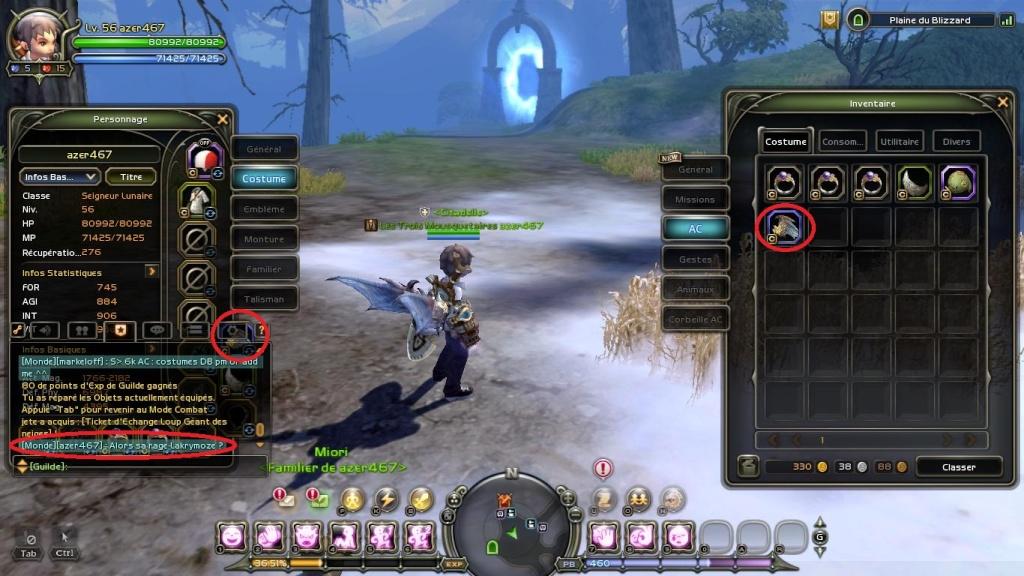 Photos de guilde (marrantes ou pas :p ) Dn_20112