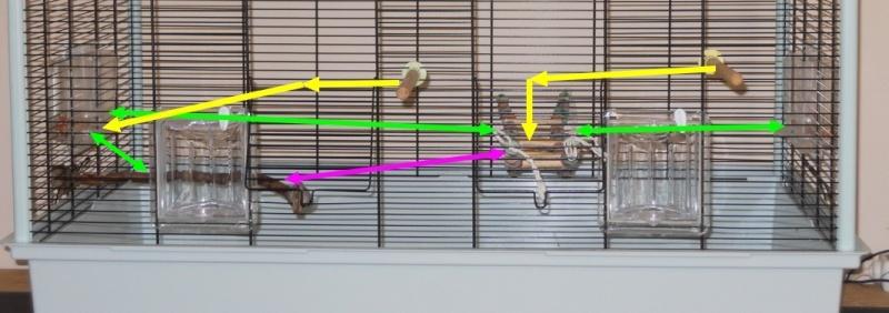 Votre opinion sur ce modèle de cage Ferplast Dcn42811