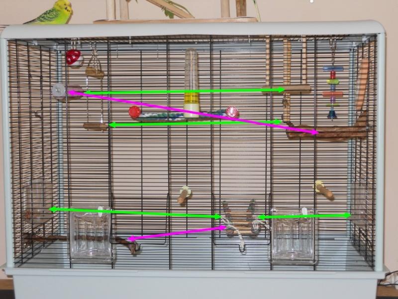 Votre opinion sur ce modèle de cage Ferplast Dscn4210