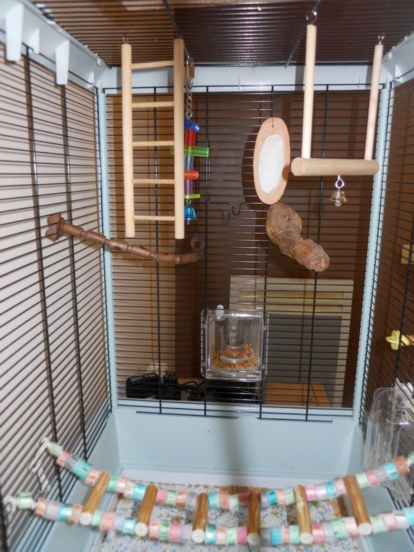 Votre opinion sur ce modèle de cage Ferplast Dscn4211