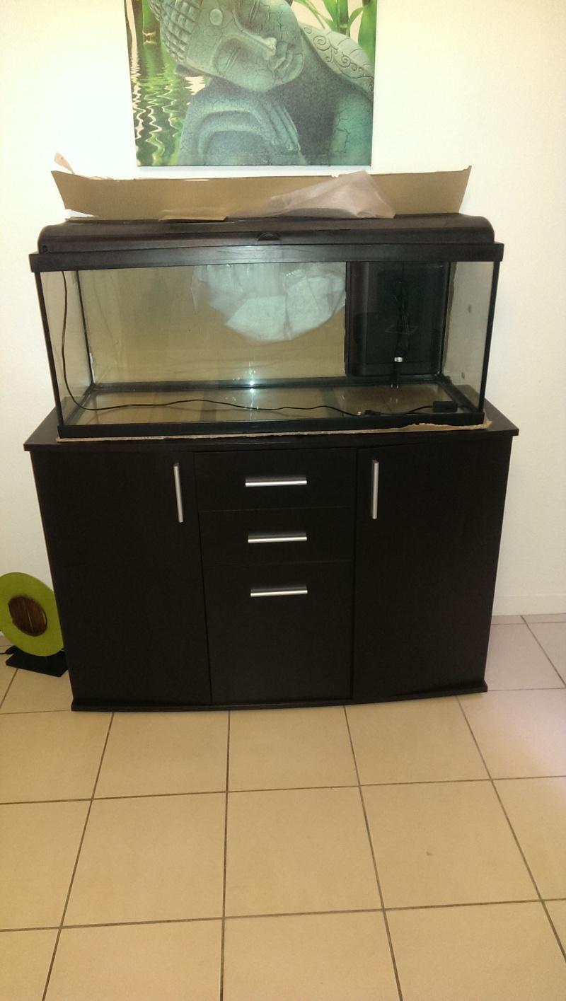 conseil pour meuble aquarium Imag0220
