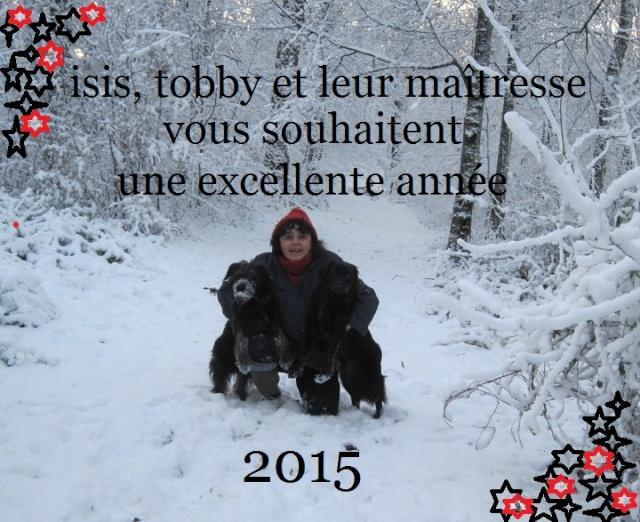 Joyeux Noël et Bonne Année 2015 Img_0111