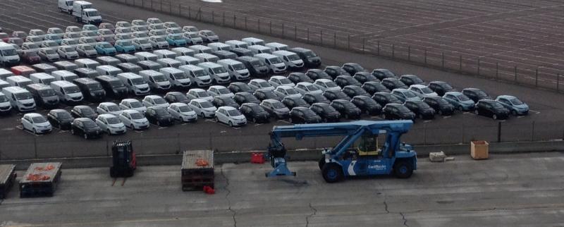 Au Havre, les Zoé se reproduisent Photo11