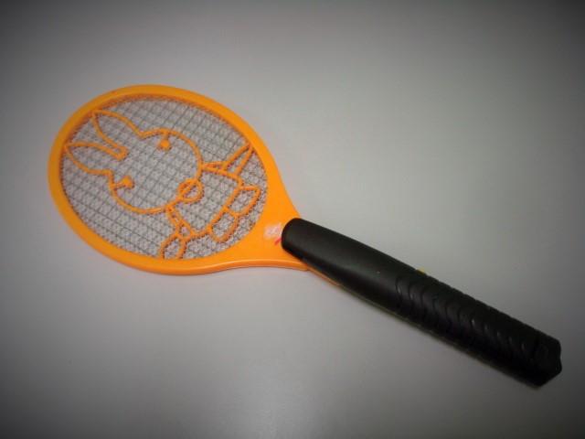 histoire de mouches..... Dsc01611