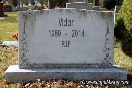 A Moment of Silence for the Fallen Vidar10
