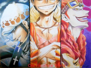 One Piece New World Monkey11