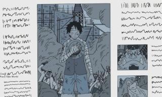 One Piece New World Period10