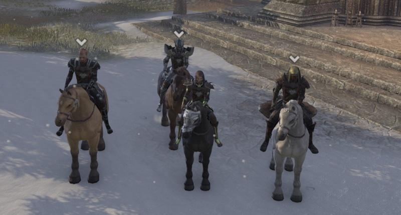 In cyrodil with the pack 3_ride11
