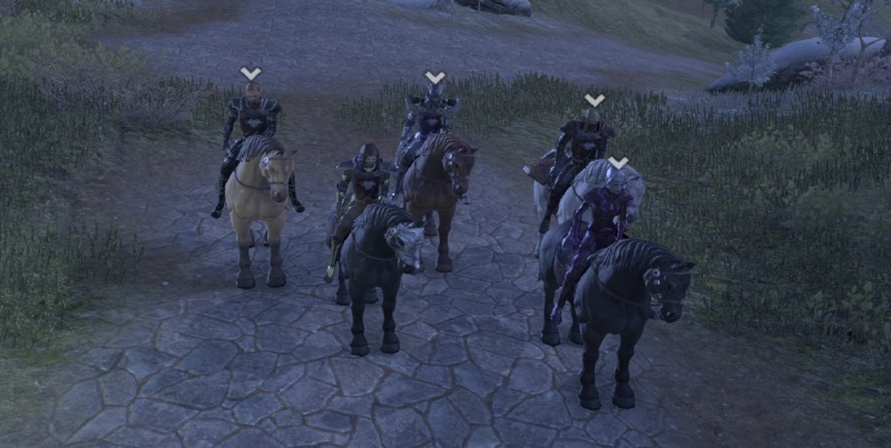 In cyrodil with the pack 3_ride12