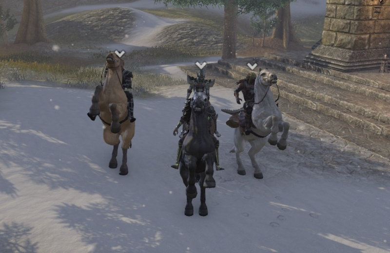 In cyrodil with the pack 3_ride13