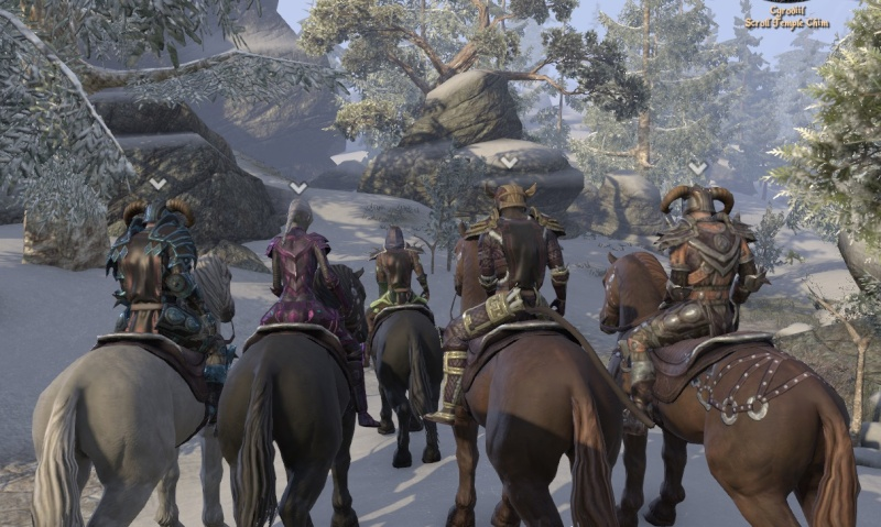 In cyrodil with the pack Rider010