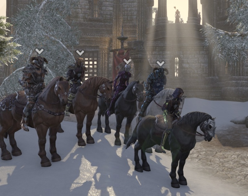 In cyrodil with the pack Rider510