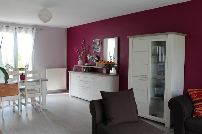 Salon / séjour avec des meubles gris Img_0414