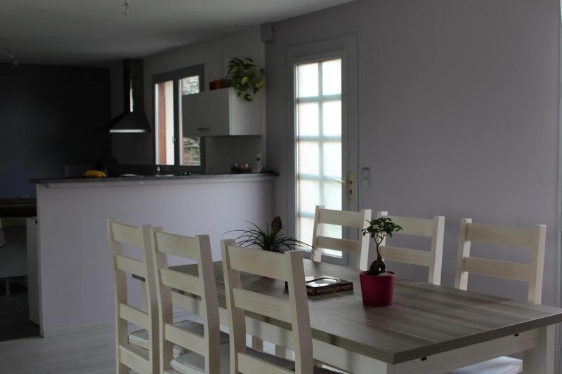 Salon / séjour avec des meubles gris Img_0415