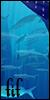 The Five Islands of Fantasy | Élite 50x10010