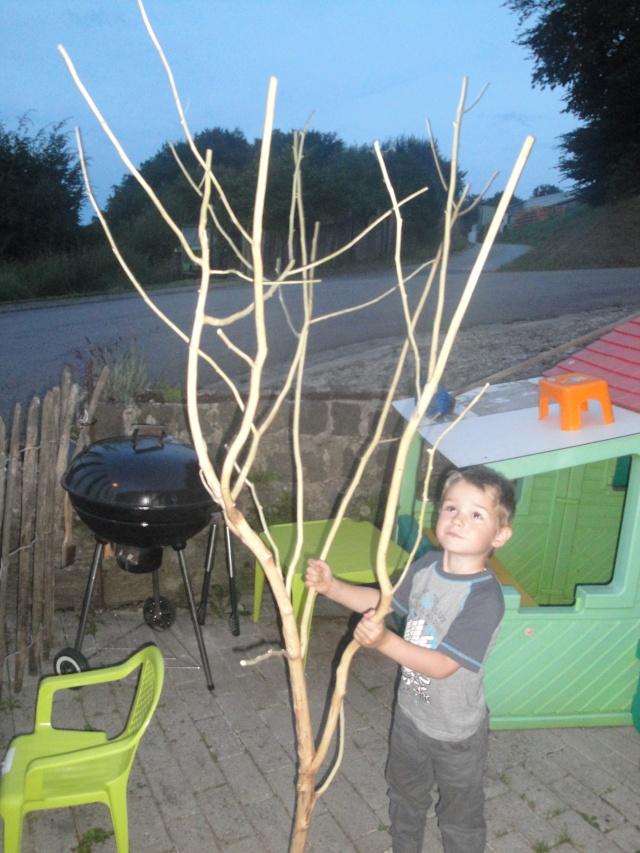 construction arbre a perruches Dsc00112
