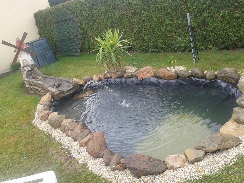 Mon bassin - Page 2 10501313