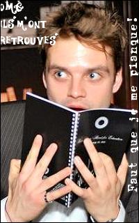 Sebastian Stan #019 avatars 200*320 pixels 512