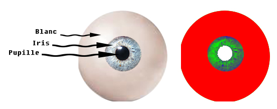 [Apprenti] Créer des yeux non default Oeil10