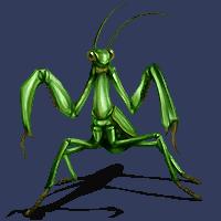 Mantis battler M-c_rp10