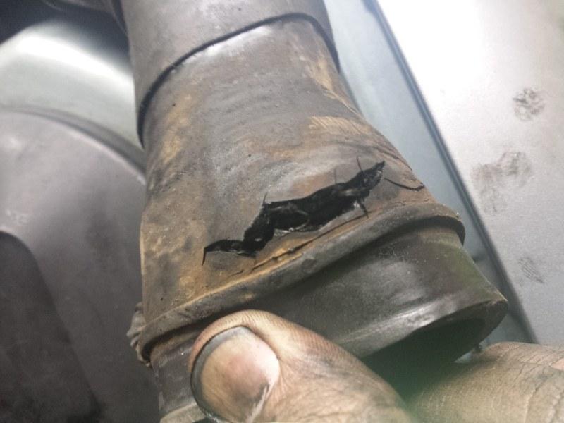 Help mon turbo souffle anormalement Bloggi11