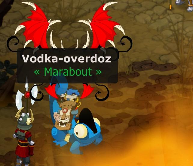 candidature de Vodka-overdoz Vodka-10