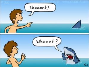 SHARK aka TAH..... Shark-10