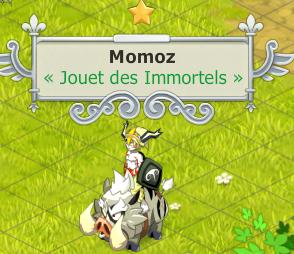 [Phase 1] Candidature de Momoz Momoz_10