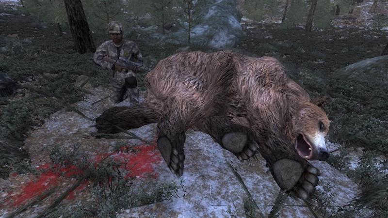 Top Bear 2°[M] 7d0d1710
