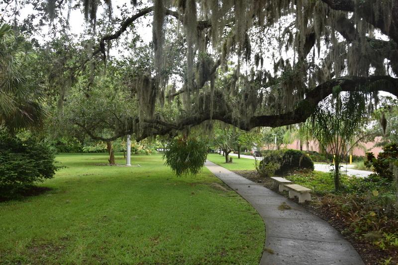 Trip en Floride du 06 juillet au 25 juillet - Page 2 20140110