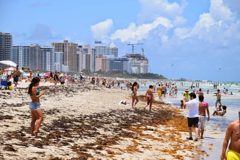 Trip en Floride du 06 juillet au 25 juillet 20140739