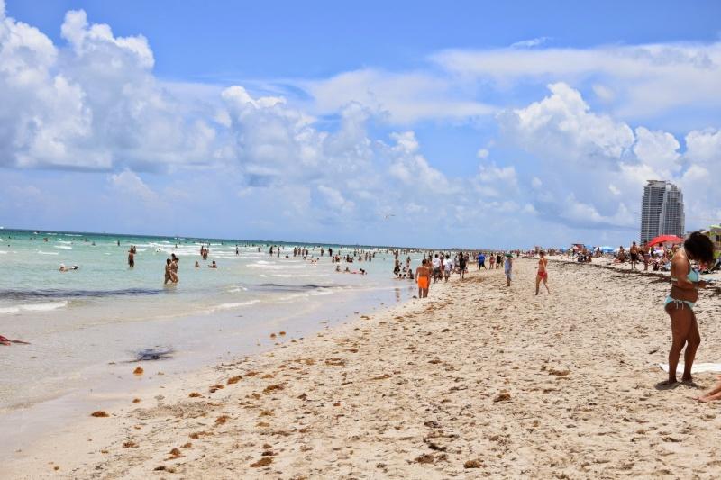 Trip en Floride du 06 juillet au 25 juillet 20140740
