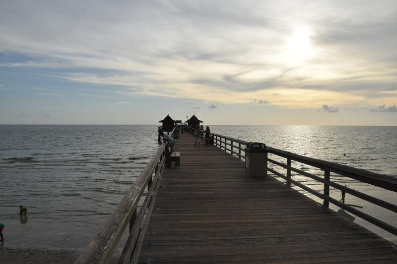 Trip en Floride du 06 juillet au 25 juillet - Page 2 20140774