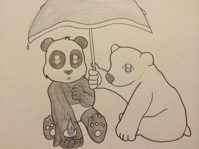 Rainy Polar Day Image39