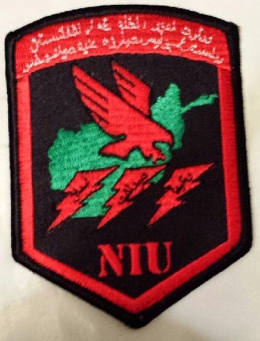 Afghanistan NIU, Counter Drug -Narco, DEA, US Military Narcoterrorism Patches Yj5wrt10