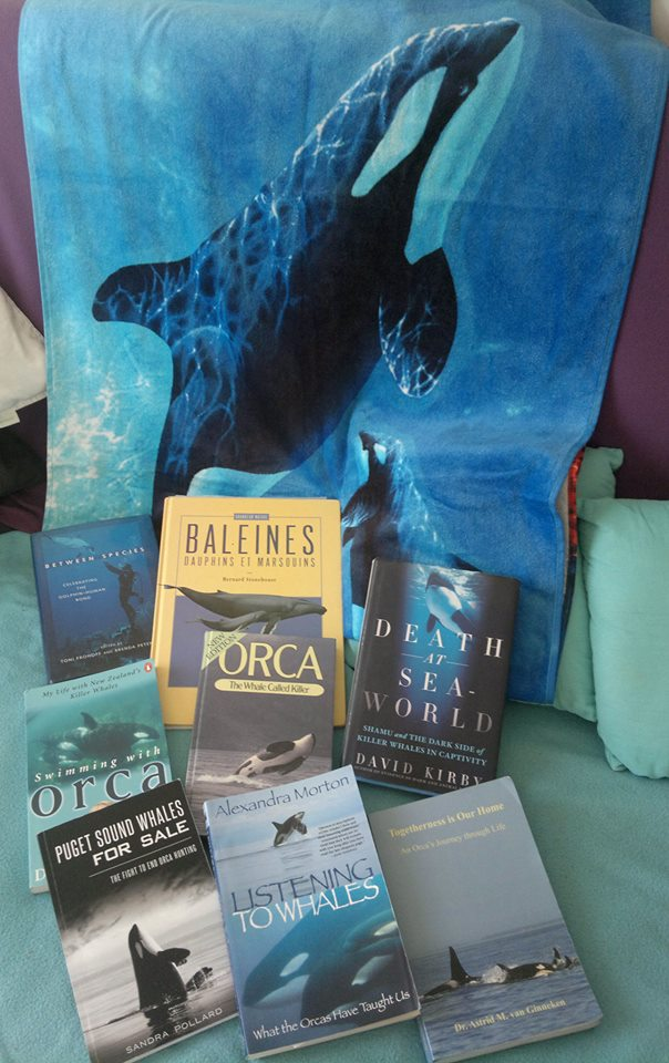 [Lecture] Vos livres sur les Orques Orcabo10