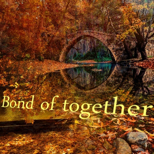 Bond Of Together.