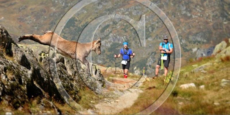 Trail des aiguilles Rouges Ambian10