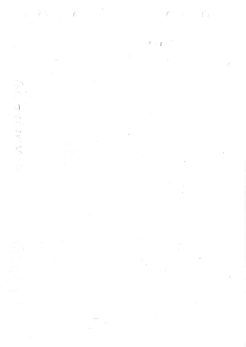 Nomenclare du luger P08 dans les armées française 1951 20140924