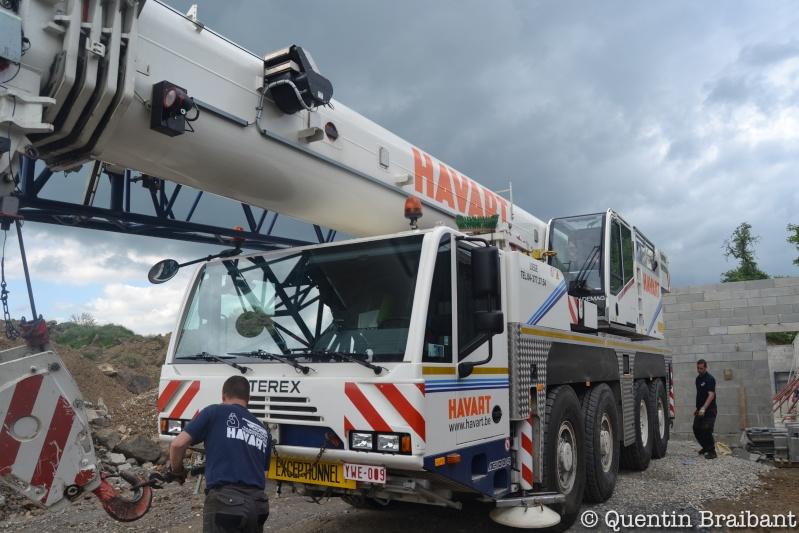 Les grues de HAVART (Belgique) Dsc_0112