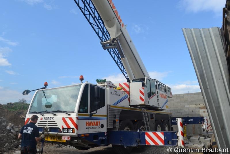 Les grues de HAVART (Belgique) Dsc_0116