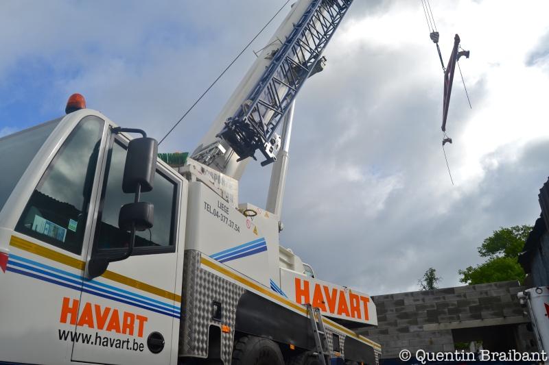 Les grues de HAVART (Belgique) Dsc_0119