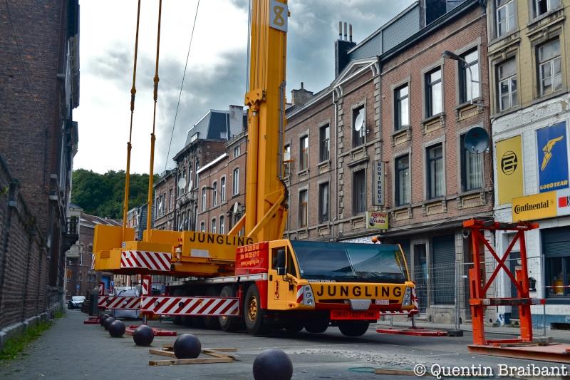 Les grues de JUNGLING (Belgique) Dsc_0610