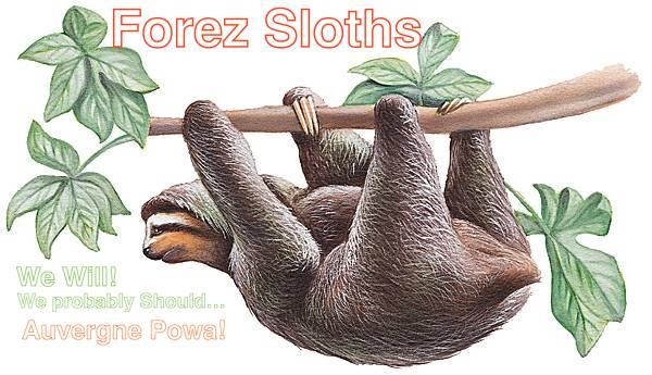 Forez Sloths Forez_11