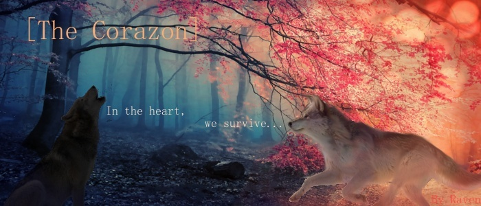 The Corazon Wolf RPG Banner12