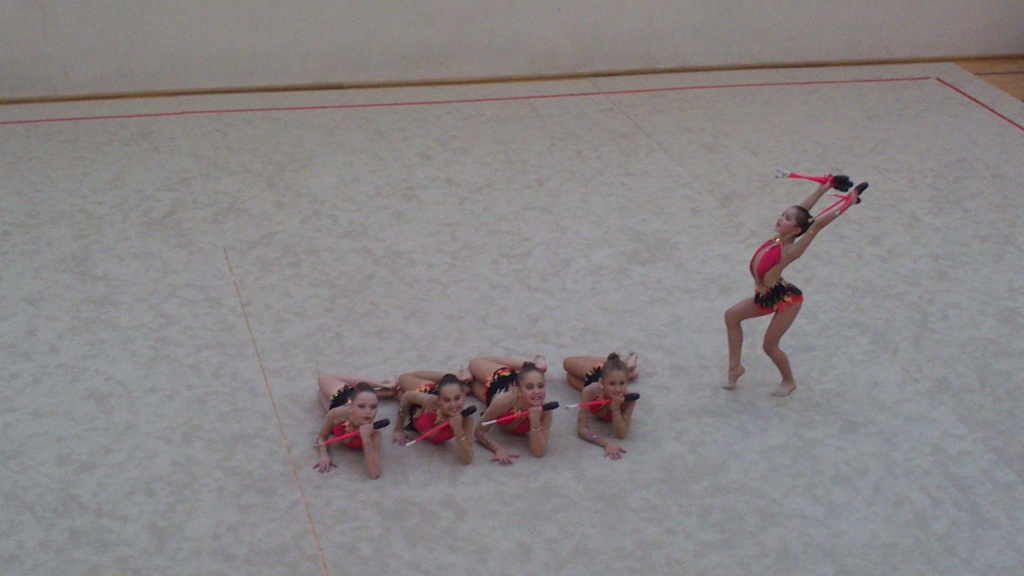 """Международный турнир по художественной гимнастике """"Vingro visi"""" 2014 - фото Dsc_1610"""