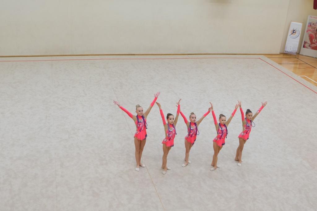 """Международный турнир по художественной гимнастике """"Vingro visi"""" 2014 - фото Dscf2613"""