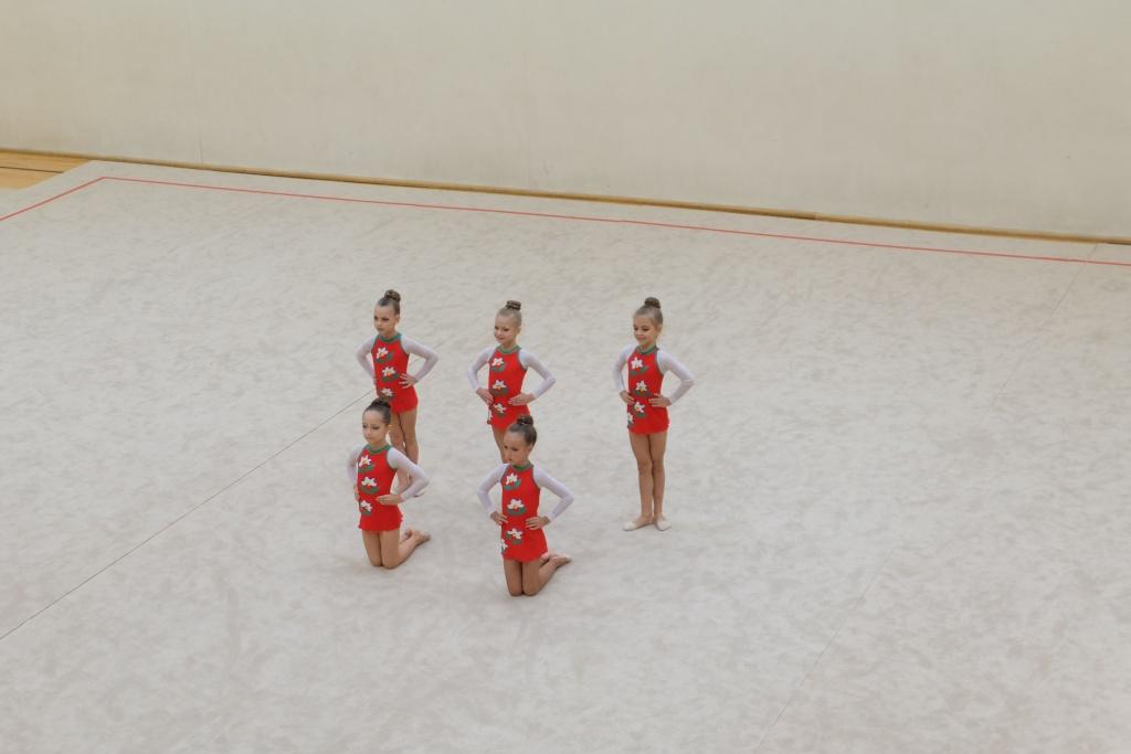 """Международный турнир по художественной гимнастике """"Vingro visi"""" 2014 - фото Dscf2615"""