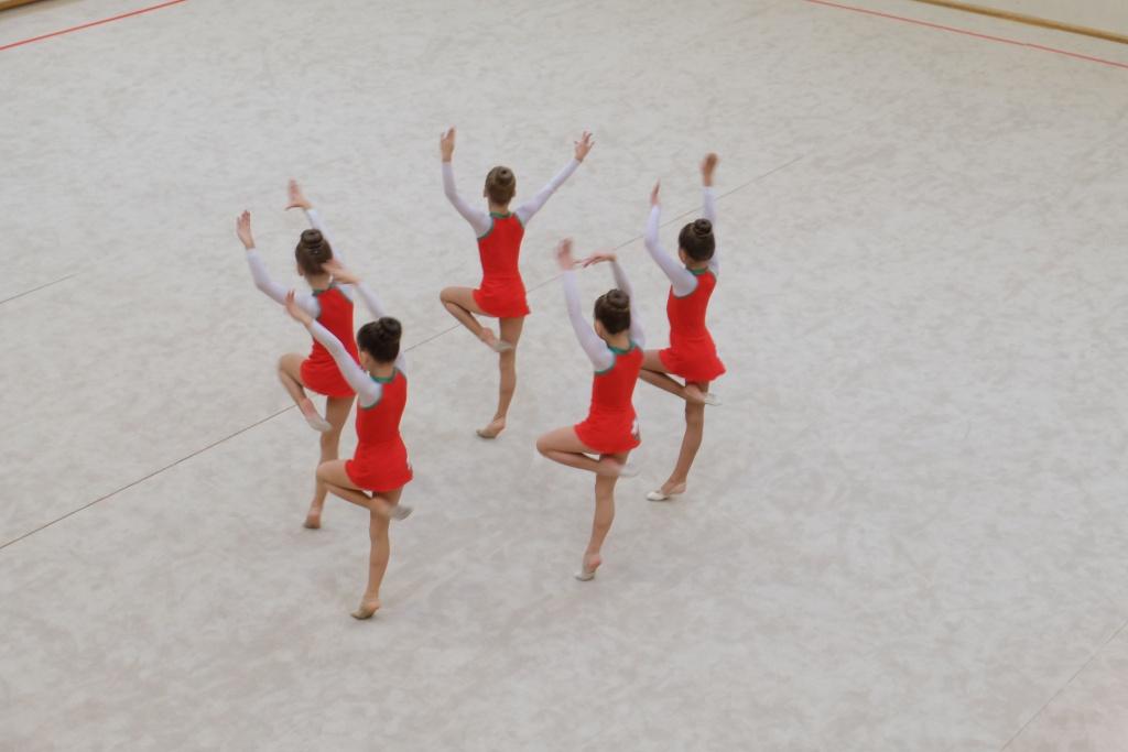 """Международный турнир по художественной гимнастике """"Vingro visi"""" 2014 - фото Dscf2616"""
