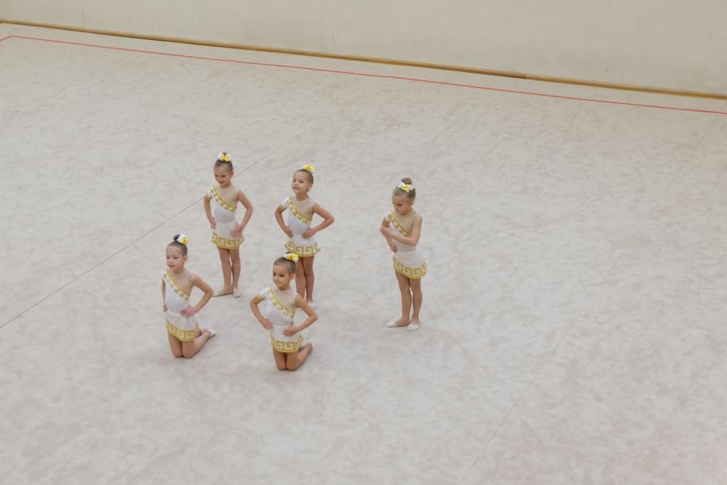 """Международный турнир по художественной гимнастике """"Vingro visi"""" 2014 - фото Dscf2617"""
